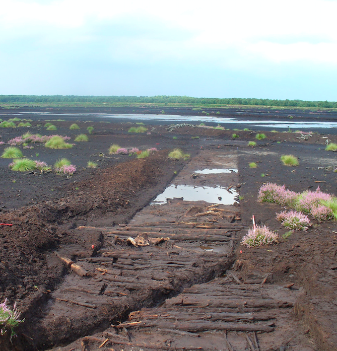 <p>A timber construction some 45 metres long, the trackway has been preserved in peat for more than 4,500 years and appears to have been used for ritual or community events. (PA) </p>