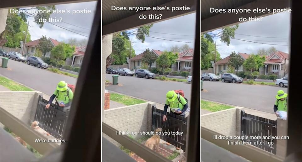 Screenshots of the TikTok taken through a front window of a house showing the AusPost worker leaning over the gate and feeding the pet dog a treat.