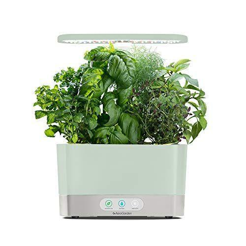 """<p><strong>AeroGarden</strong></p><p>amazon.com</p><p><strong>$109.99</strong></p><p><a href=""""https://www.amazon.com/dp/B07WCCB1BC?tag=syn-yahoo-20&ascsubtag=%5Bartid%7C2139.g.37612148%5Bsrc%7Cyahoo-us"""" rel=""""nofollow noopener"""" target=""""_blank"""" data-ylk=""""slk:BUY IT HERE"""" class=""""link rapid-noclick-resp"""">BUY IT HERE</a></p><p>If your loved one has a green thumb and an adoration of herbs, this indoor garden makes growing their own super easy. With an LED control panel and smart monitoring, the compact machine makes it easy to grow your own basil, mint, parsley, and more.</p>"""