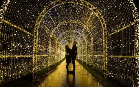 The beauty of Christmas at Kew has attracted many families and tourists over the last five years - Credit: AFP