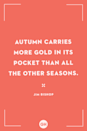 <p>Autumn carries more gold in its pocket than all the other seasons.</p>