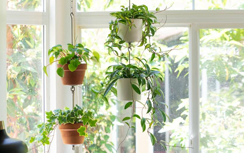 This New Kit Makes Creating A Vertical Container Garden Easier