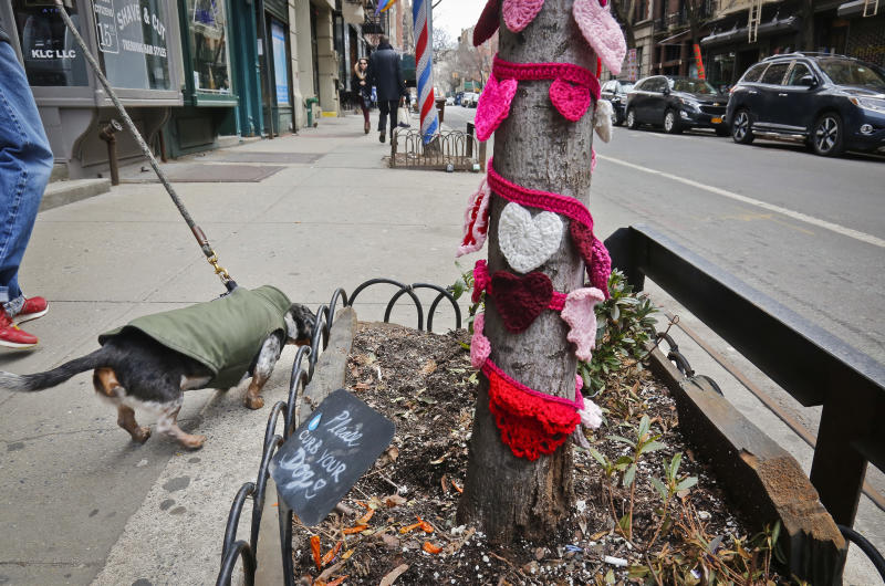 One of more than a dozen trees on Christopher Street is shown decorated in crocheted patterns, Monday March 5, 2018, in New York. The New York City Parks Department says a cluster of trees in the West Village neighborhood can keep their crocheted art after residents of the neighborhood said that it increased business and foot traffic. (AP Photo/Bebeto Matthews)