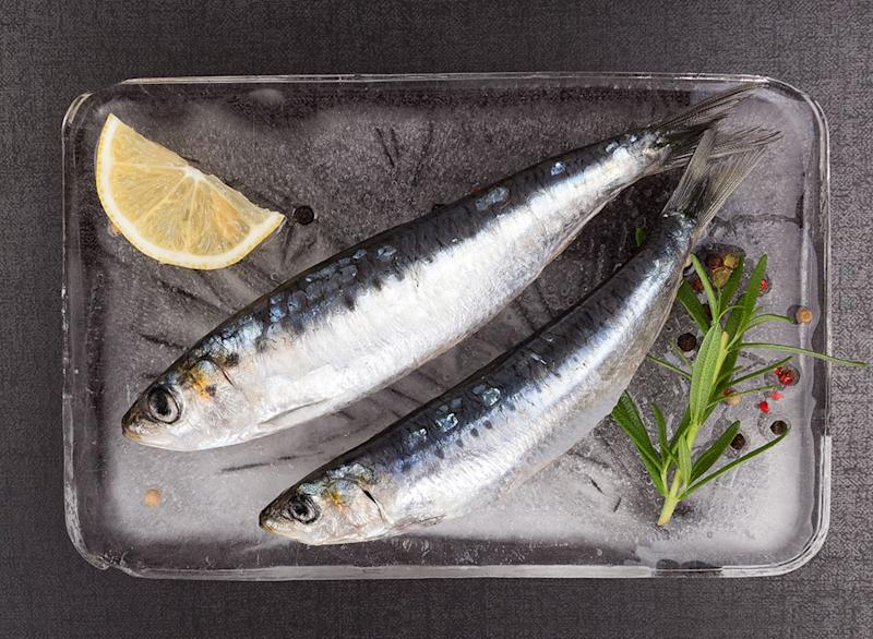 Fish ranked European Anchovy