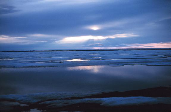 Will Arctic Sea Ice Reach Record Low This Year?