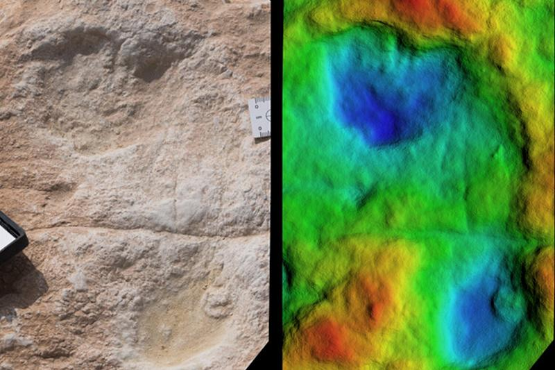 120,000-Year-Old Human Footprints Discovered in Saudi Arabia: 'They Provide Snapshots in Time'