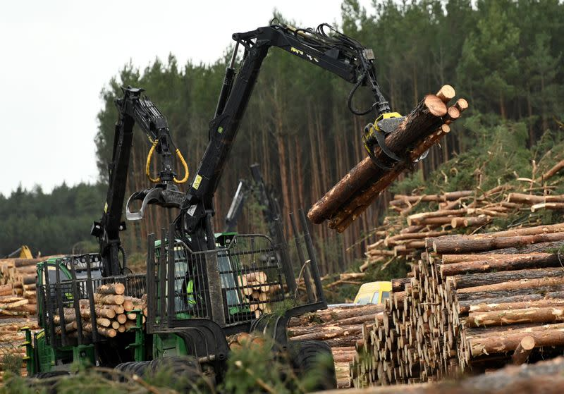 A worker clears trees at the area where U.S. electric vehicle pioneer Tesla plans to build a Gigafactory in Gruenheide