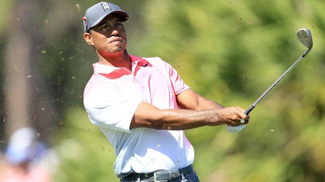 Tiger Woods got caught in the Bear Trap on Friday, but bit back with a late birdie to sign for 1-over 71 on a difficult day at PGA National.