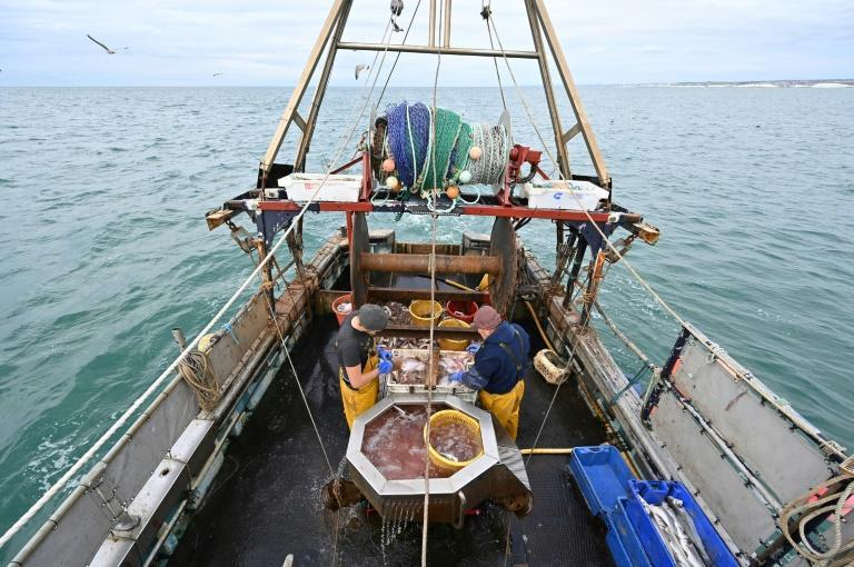 Fishing is a small economic activity for both the UK and EU -- but a politically totemic one