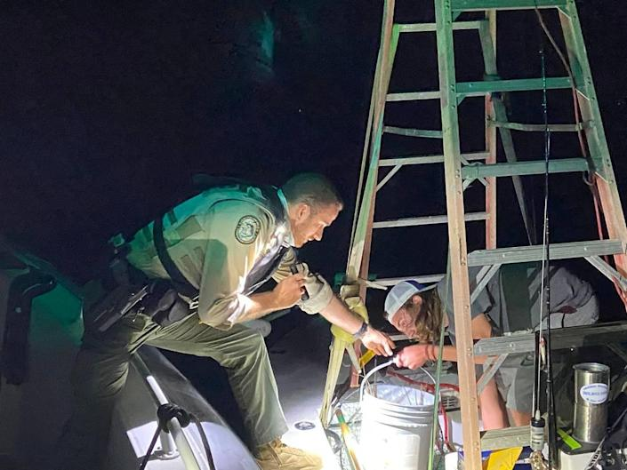 Florida Fish and Wildlife Conservation Commission Officer Joshua Stallings grabs a bucket from Reece Jahn Wednesday, July 28, 2021. Stallings was checking the size of the lobsters caught by Reece and his father Steve during the first day of lobster miniseason.