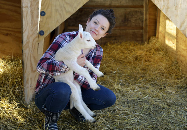 "Brittney Johnson with a lamb on her sheep ranch near Underwood, Minn. Johnson is campaigning for state representative in Minnesota's District 8A on the dual platform of ""health care and farming."" (Photo: Dan Koeck for Yahoo News)"