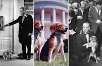 <p>From left: Him and Her, pet beagles of President Lyndon B. Johnson, sitting together on lawn of White House; US President Lyndon Johnson and Him.</p>