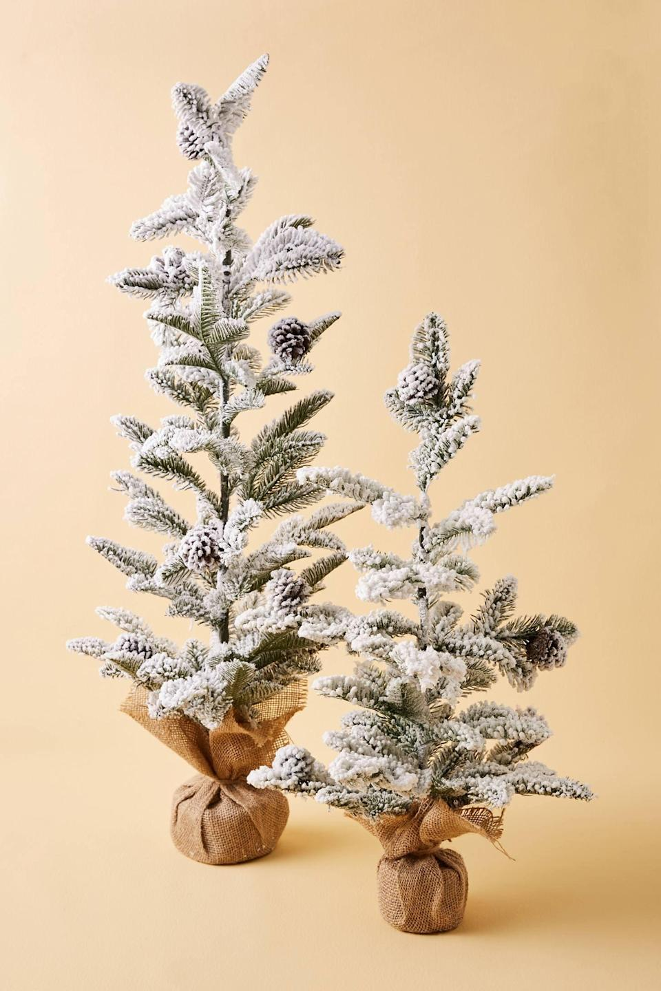 """<p>Turn your home into a Winter wonderland with the <a href=""""https://www.popsugar.com/buy/Flocked-Christmas-Tree-490436?p_name=Flocked%20Christmas%20Tree&retailer=anthropologie.com&pid=490436&price=38&evar1=casa%3Aus&evar9=46615300&evar98=https%3A%2F%2Fwww.popsugar.com%2Fhome%2Fphoto-gallery%2F46615300%2Fimage%2F46615305%2FFlocked-Christmas-Tree&list1=shopping%2Canthropologie%2Choliday%2Cchristmas%2Cchristmas%20decorations%2Choliday%20decor%2Chome%20shopping&prop13=mobile&pdata=1"""" rel=""""nofollow noopener"""" class=""""link rapid-noclick-resp"""" target=""""_blank"""" data-ylk=""""slk:Flocked Christmas Tree"""">Flocked Christmas Tree</a> ($38-$58).</p>"""