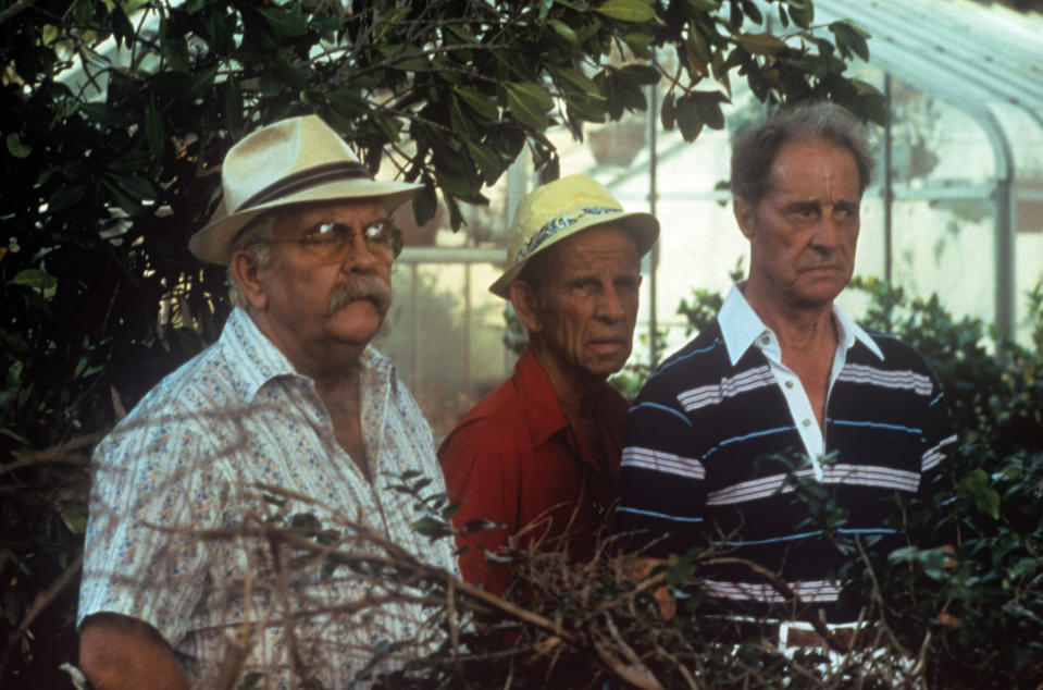 American actors Wilford Brimley, Hume Cronyn and Don Ameche acting in a greenhouse in the film Cocoon. 1985 (Photo by Mondadori via Getty Images)