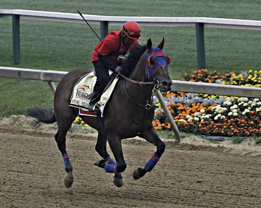 Trainer has his best horse in Preakness at 85