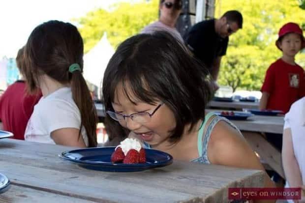LaSalle's Strawberry Festival in 2017. The 2021 festival will be cancelled due to COVID-19.