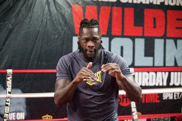 WBC Deontay Wilder participates in a media workout on February 14, 2017 in Northport, Alabama (AFP Photo/David A. Smith)