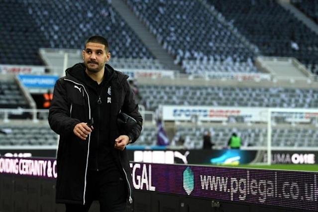 Slavisa Jokanovic convinced Newcastle loanee Aleksandar Mitrovic can propel Fulham to the Premier League