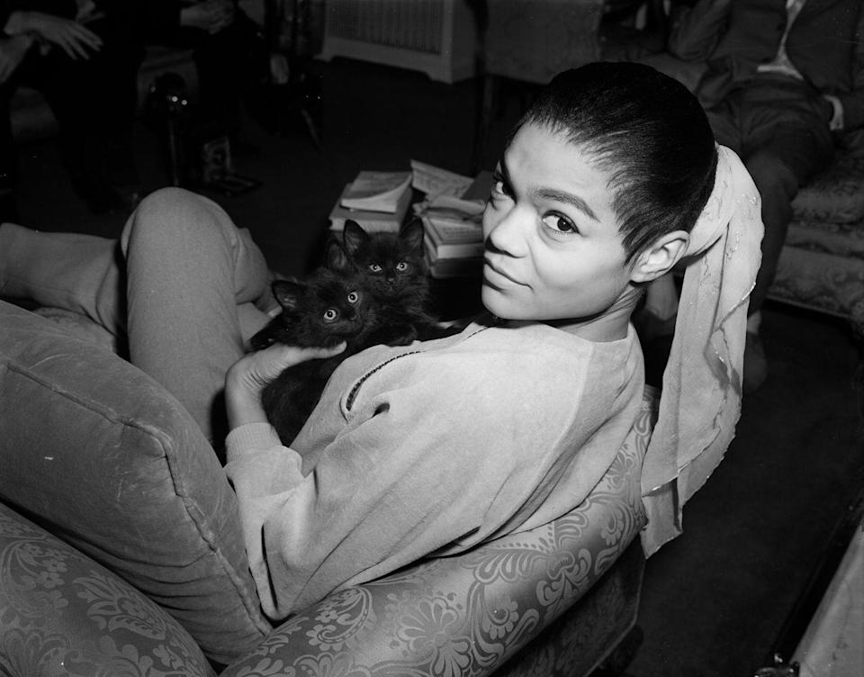 <p>With her hair pulled back and tied with a scarf, Kitt snuggles with kittens in a relaxed top and cropped pants. </p>