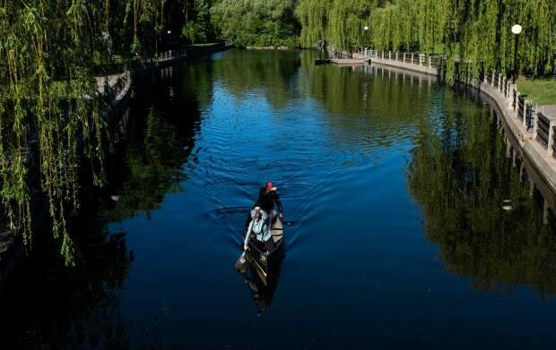 People paddle along Patterson Creek on the Rideau Canal in late May. (Justin Tang/Canadian Press - image credit)