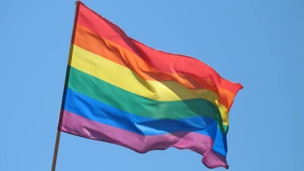 The Peel District School Board and the administration at Cawthra Park Secondary issued a joint statement condemning 'this hateful act of homophobia, transphobia and biphobia.' (CBC - image credit)