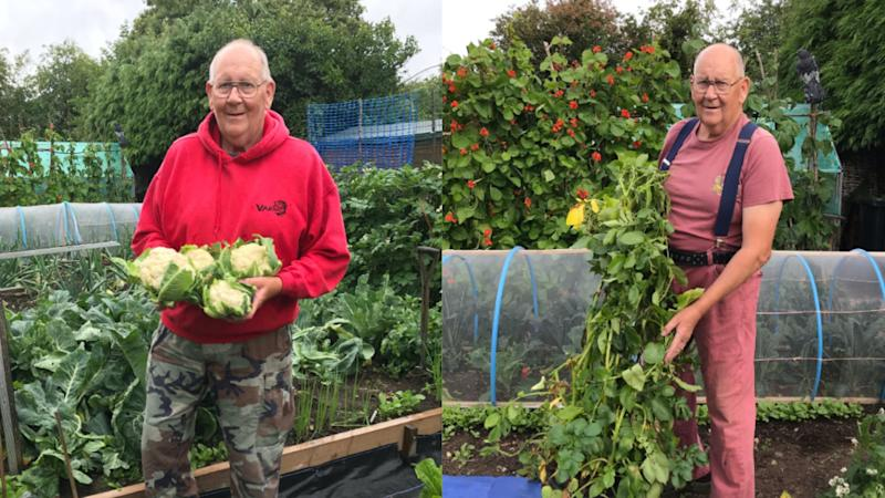 'Vegetable king', 71, becomes viral sensation with gardening Twitter account
