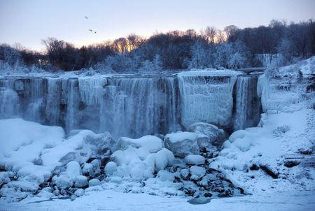 <p>A group of birds fly past ice and water flowing over the American Falls, viewed from the Canadian side. REUTERS/Aaron Lynett </p>