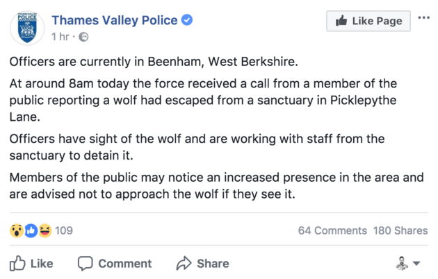 Members of the public in West Berkshire have been warned to watch out for a wolf after it escaped from a sanctuary in Beenham.