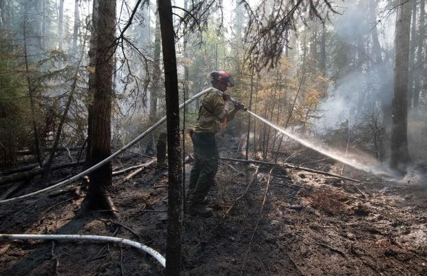 In this file photo, an Alberta wildland firefighter douses hot spots in the forest.  Officials say exploding targets are to blame for at least three human-caused wildfires this year.  (Chris Schwarz/Government of Alberta - image credit)