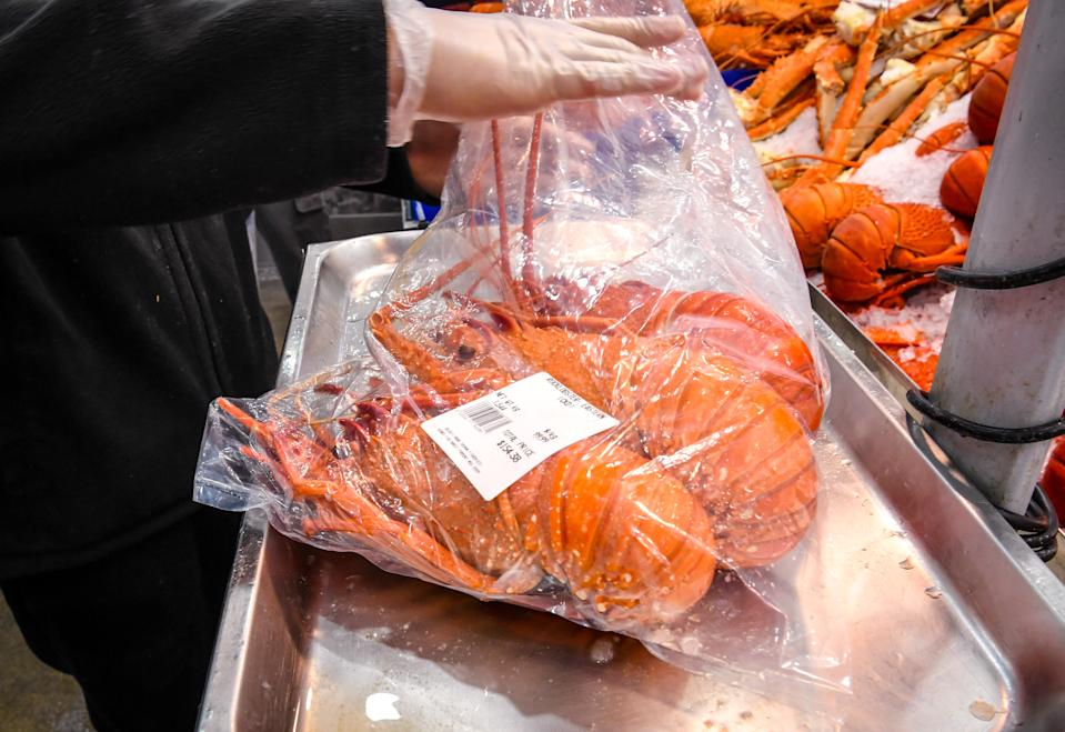 Worker placing lobsters into a bag. Source: AAP