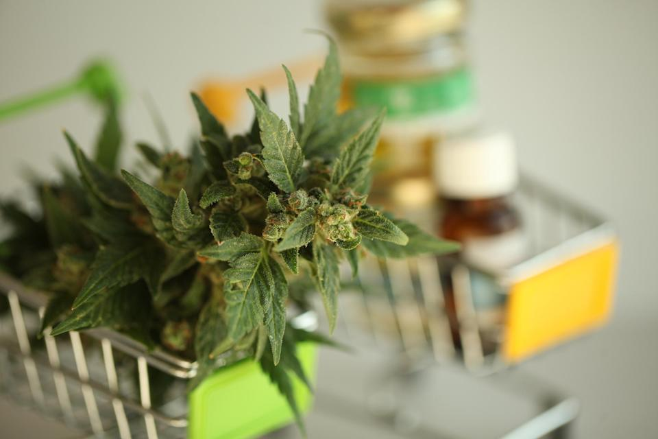 Two miniature shopping carts, one of which contains a cannabis flower, while the other holds bottled cannabidiol oils.