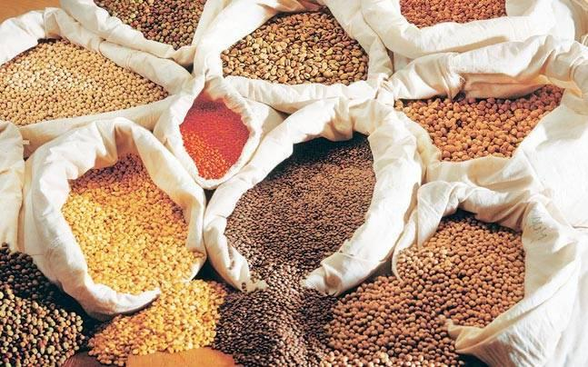 Maharashtra government mulls auction of tur through global tender for want of storage space