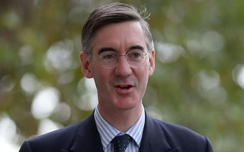 Jacob Rees-Mogg said the protest 'wasn't very well organised' - Credit: AFP