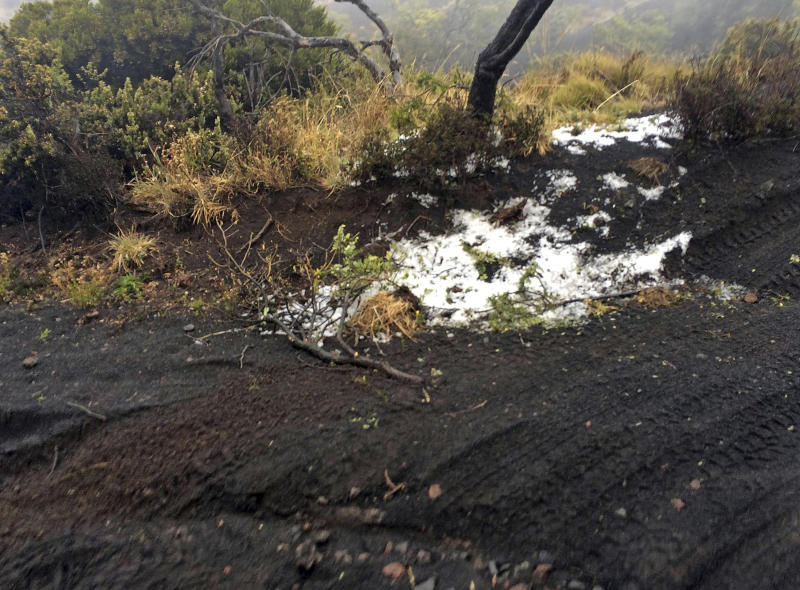 Black volcanic cinders are covered with a dusting of snow at the Polipoli State Recreation area on the slopes of Haleakala near Kula on the Hawaii island of Maui, Monday, Feb. 11, 2019. A strong storm hitting Hawaii has knocked out power, brought down tree branches, flooded coastal roads — and even brought snow. Snow is not unheard of in mountainous parts of the tropical island chain, but officials say the coating at 6,200 feet (1,900 meters) at the state park on Maui could mark the lowest-elevation snowfall ever recorded in the state. (Brent Edwards via AP)