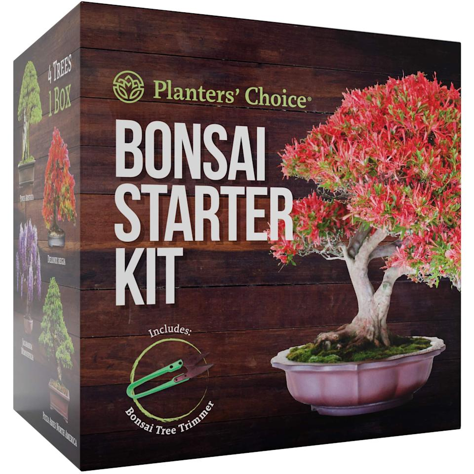 """<h3>Planters' Choice Bonsai Starter Kit - The Complete Growing Kit</h3><br>""""Capricorns are very patient and understand the value of putting in hard work to reach a long-term goal,"""" Register adds. """"Bonsai trees take years to grow even a little, and you have to watch them grow carefully and be sure to water, trim, and shape it perfectly to have a satisfying end result — so this is totally right up a Capricorn's alley."""" Best yet, your Cap recipient doesn't even have to be a bonafide plant mom/dad to appreciate the gesture: """"Even if they don't have a green thumb or haven't expressed interest in gardening before, a bonsai tree is a great way to subtly liven up their apartment or office.""""<br><br><strong>Planters' Choice</strong> Bonsai Starter Kit - The Complete Growing Kit, $, available at <a href=""""https://amzn.to/2sHsc2y"""" rel=""""nofollow noopener"""" target=""""_blank"""" data-ylk=""""slk:Amazon"""" class=""""link rapid-noclick-resp"""">Amazon</a>"""