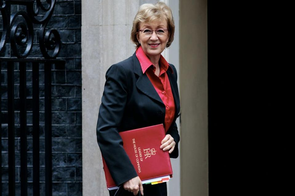 Andrea Leadsom is the most popular minister among Tory members (Getty)