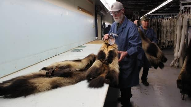 Submitted by Fur Harvesters Inc.