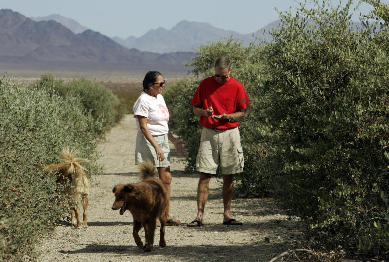 FILE - This Oct. 10, 2006 file photo, Donna and Larry Charpied walk at their home on their jojoba farm near Desert Center in Southern California's Mojave Desert, near a proposed dump site. Los Angeles County's sanitation districts are no longer pursuing plans to build a 4,000-acre landfill near Joshua Tree National Park on former mine land. David Rothbart, supervising engineer at the Sanitation Districts of Los Angeles County, said Friday, May 24, 2013 that the agency will use the $41 million set aside for the land purchase for more recycling and other projects. (AP Photo/Reed Saxon, File)
