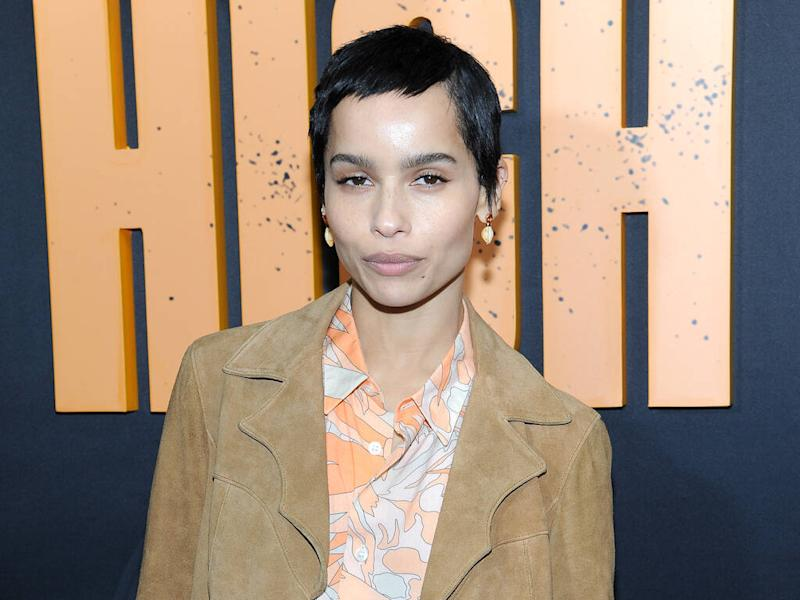 Zoe Kravitz claps back at online troll over comment about her lips