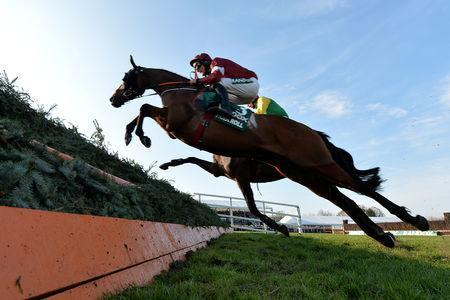Horse Racing - Grand National Festival - Aintree Racecourse, Liverpool, Britain - April 6, 2019 Tiger Roll ridden by Davy Russell before winning the 5.15 Randox Health Grand National Handicap Chase REUTERS/Peter Powell