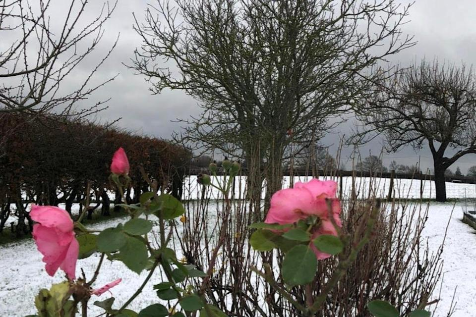 <p>Grey skies are set to give way to a brighter weekend</p>Kathleen Brewis