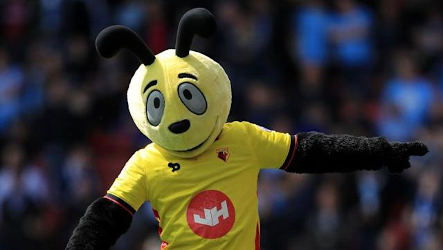 <p>It is Watford's yellow and black colours that dictated them being nicknamed 'The Hornets', but it wasn't actually until 1959 that the club settled on such a kit. Prior to that, Watford strips had been various colours - blue, black and white, white, and red, green and yellow.</p> <br><p>The club crest later also included the hornet image, although it was quickly changed in 1978 to depict a 'hart', or stag, instead. The hart is a nod to the club's home in Hertfordshire, which is thought to have taken its name from the creatures.</p>