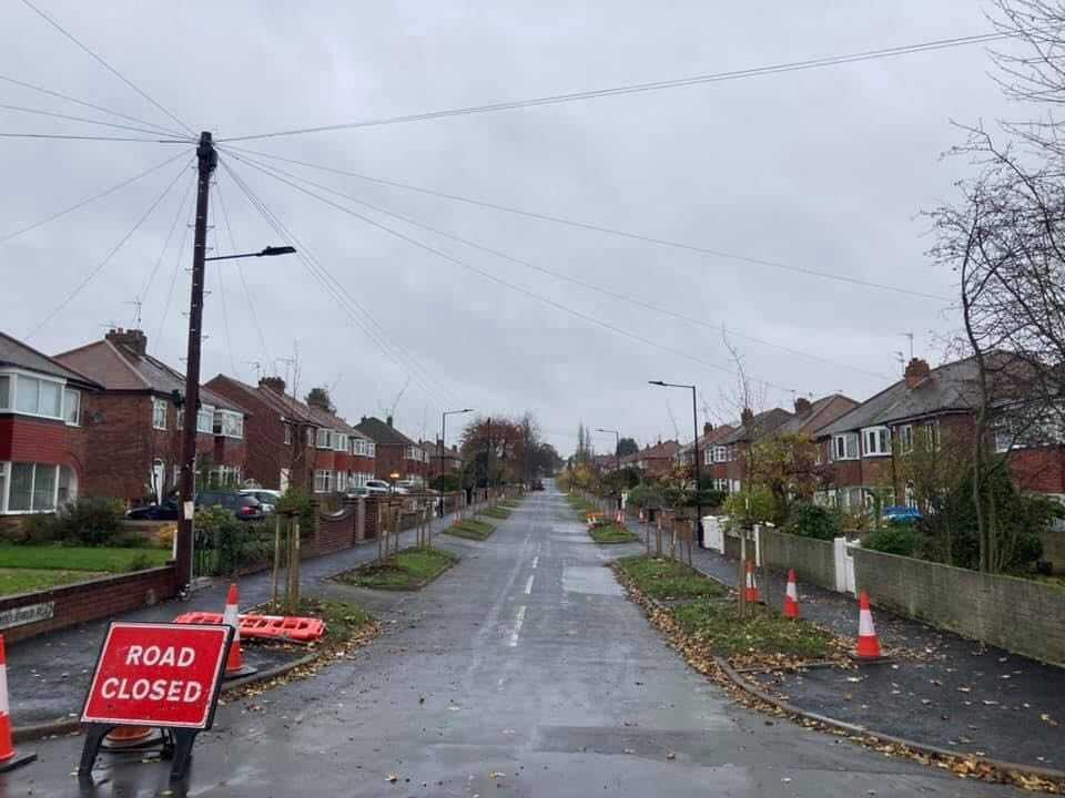 Middlefield Road after 60 lime trees were chopped downRichard Needham