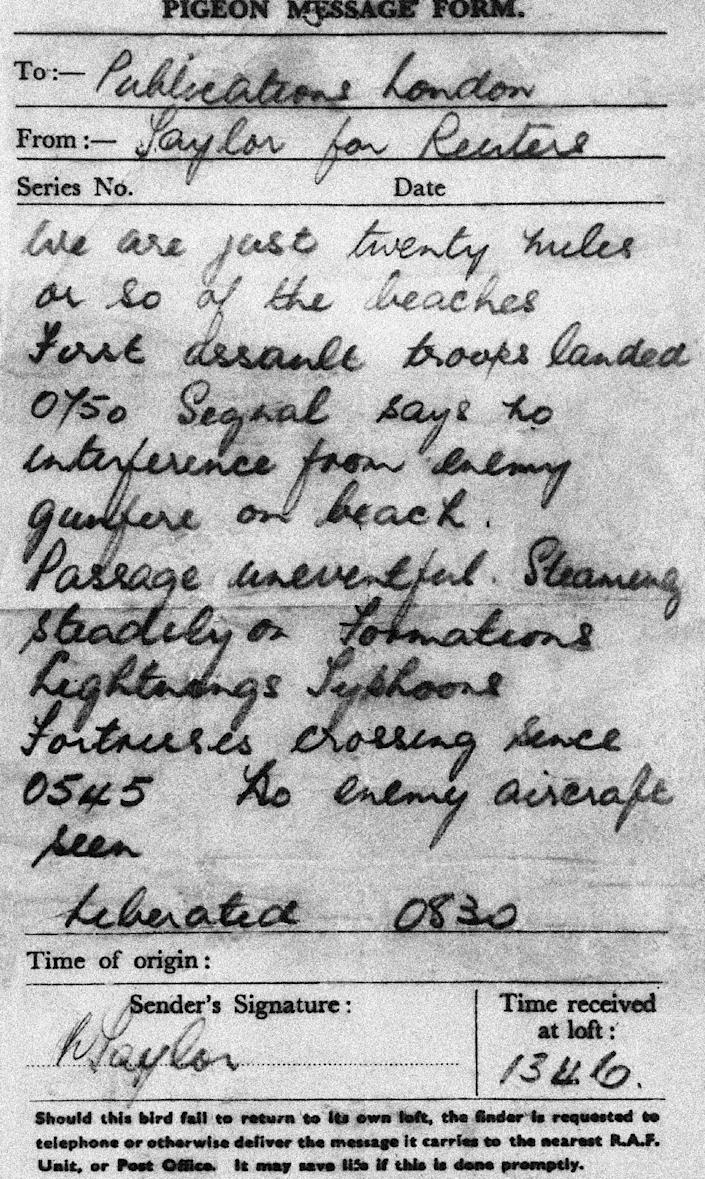 FILE- Gustave an R.A.F. Coastal Command carrier pigeon, brought this War Correspondent's dispatch back to England from the Allied Invasion forces off France, in this file photo dated June 6, 1944. The message from Reuters correspondent Mr. Taylor, was carried by Gustav the pigeon, and Gustav was awarded the Dickin Medal for animal gallantry for delivering the fist message from the Normandy Beaches from a ship off the beach-head while serving with the RAF on 6 June 1944. The latest animal to receive the Dickin Medal is announced Thursday Oct. 25, 2012, a bomb-sniffing army springer-spaniel dog named Theo, who died in Afghanistan on the day his handler was killed has been posthumously honored with the Dikin Medal, Britain's highest award for animal bravery, during a ceremony in London Thursday Oct. 25, 2012. Theo worked for five months in Afghanistan with Royal Army Veterinary Corps Lance Cpl. Liam Tasker, searching out roadside bombs, but Tasker was killed in a firefight with insurgents in Helmand Province in March 2011, and Theo the dog died hours later. (AP Photo, File)