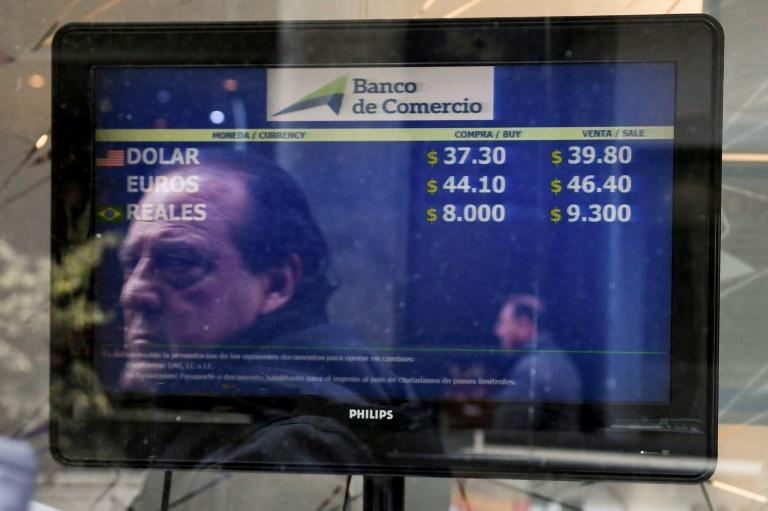 Argentina's peso is on the mend, taking back 5.0 percent of the 20 percent losses it suffered against the dollar