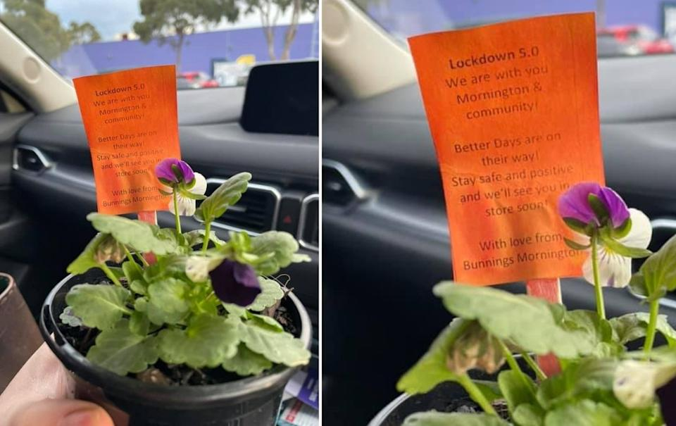 Bunnings Mornington is offering customers a free gift with their click and collect purchases.