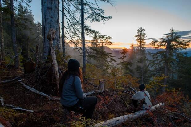 Activists from Ridge Camp watch the sunset from the top of the Fairy Creek watershed. Most have vowed to continue their opposition despite the recently negotiated two-year deferment of logging in the Fairy Creek and central Walbran areas.  (Kieran Oudshoorn/CBC - image credit)