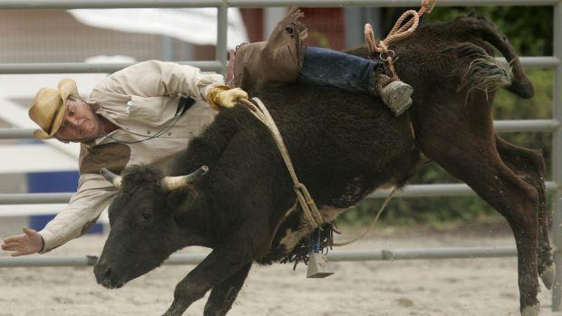 A cowboy is thrown from the back of a bucking bull.