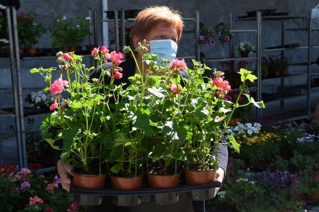 A florist wears a mask in Carballino, Spain. (Getty Images)