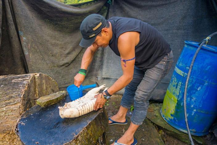 "<span class=""caption"">A man in Ecuador in 2017 prepares an armadillo for lunch.</span> <span class=""attribution""><a class=""link rapid-noclick-resp"" href=""https://www.shutterstock.com/image-photo/santa-ana-ecuador-may-07-2017-653823466?src=ACmXu7MuZv7g3gHk7bzu_w-1-3"" rel=""nofollow noopener"" target=""_blank"" data-ylk=""slk:Fotos593/Shutterstock"">Fotos593/Shutterstock</a></span>"